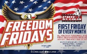 FreedomFriday_LED_315